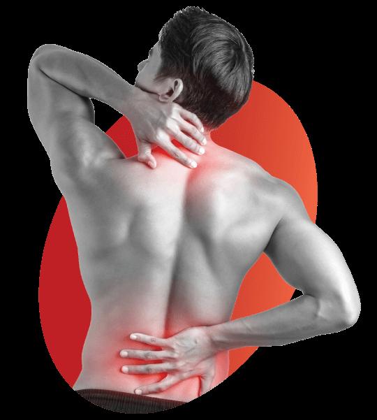 Polimedel - bolesti chrbta
